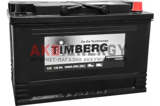 TIMBERG Professional Power 125 Ач 1000 А [EN] Обратный